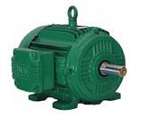Weg motors from rs electric motors weg electric motors for Weg nema premium motors